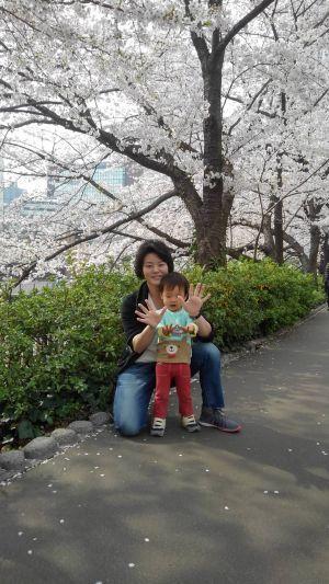 圭悟君目黒川の桜舞ちゃんと