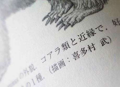 yu-tairui03R.jpg