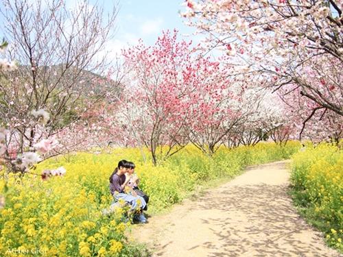 nishigawa-flowerpark-e.jpg