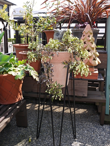 gardening400