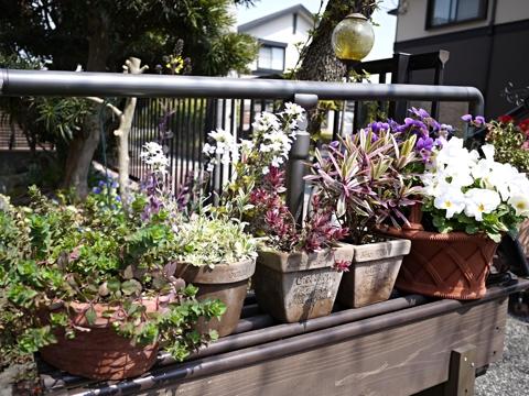 gardening403