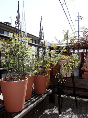 gardening408