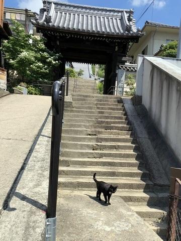 18.06.01女子旅(尾道)5