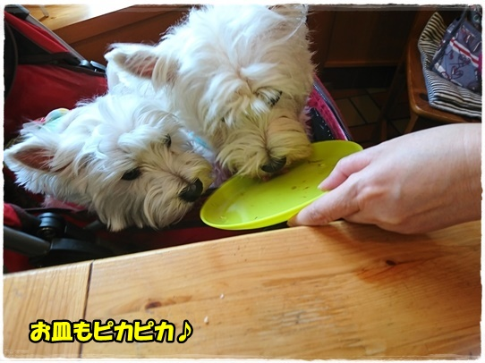 lunch12.jpg