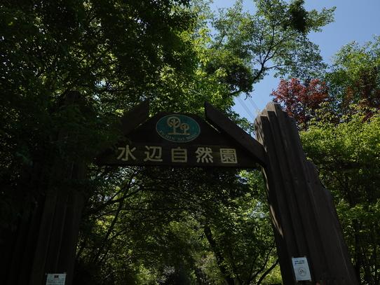 park1_20180511224649b6d.jpg