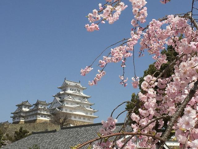 姫路城180331⑬