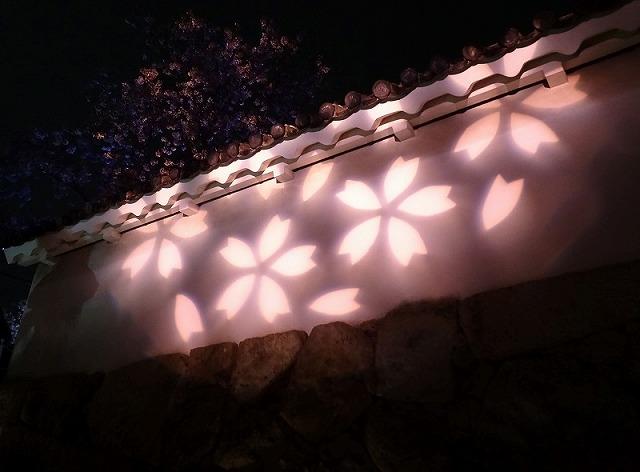 姫路城180404夜桜①