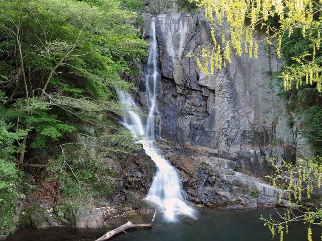 180602布引の滝④