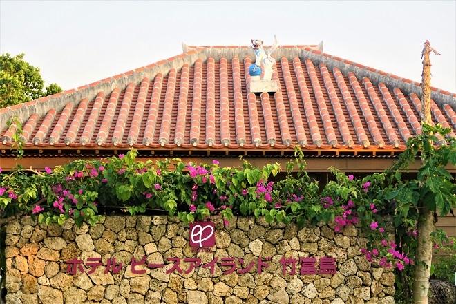 竹富島観光とDXの旅(13)