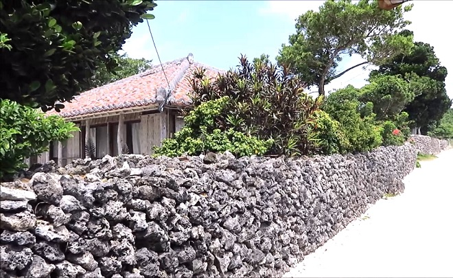 竹富島の水牛車観光にて_03