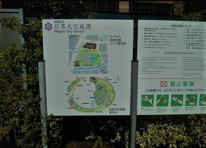 2018目黒川の桜(2)
