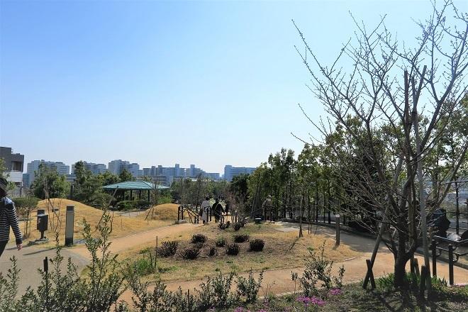 2018目黒川の桜(3)