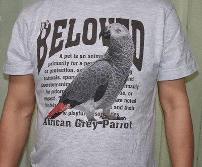 6_Tシャツ