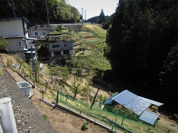 6 18.4.10 物見山ハイク里山風景 (31)