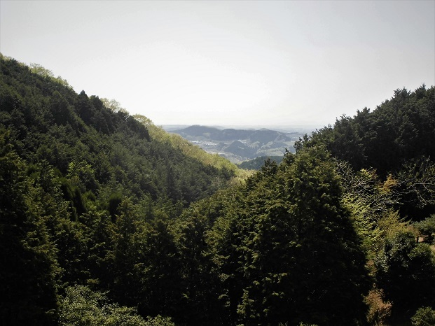 7 18.4.10 物見山ハイク里山風景 (46)