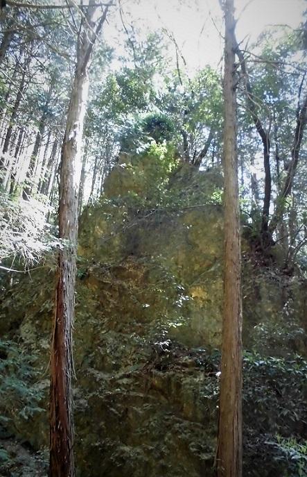 18.4.10 物見山ハイク里山風景 (20)