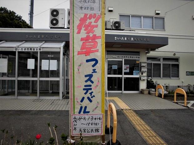 18.4.14 桜草まつり (57)