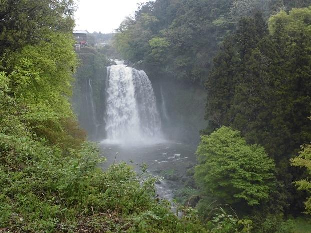 18.4.15 白糸の滝 (53)