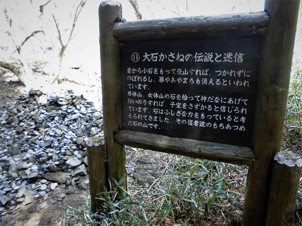 7 18.4.21 筑波山  (109)