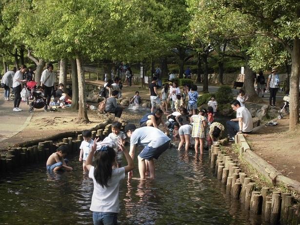 18.4,22 丸山公園  (29)