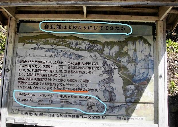 3 18.3.30 清雲寺の桜 (45)_LI
