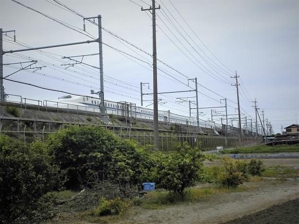 2 18.4.24 浜松 (42)
