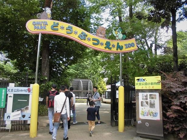 3 18.4.30 大宮公園  (66)