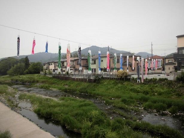 4 18.5.2 武蔵嵐山・仙元山 (157)