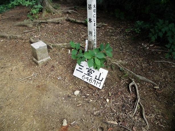1 18.5.18 三室山~日の出山 (16)