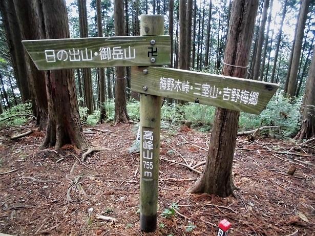 2 18.5.18 三室山~日の出山 (24)