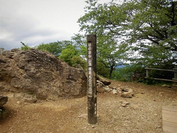3 18.5.18 三室山~日の出山 (30)