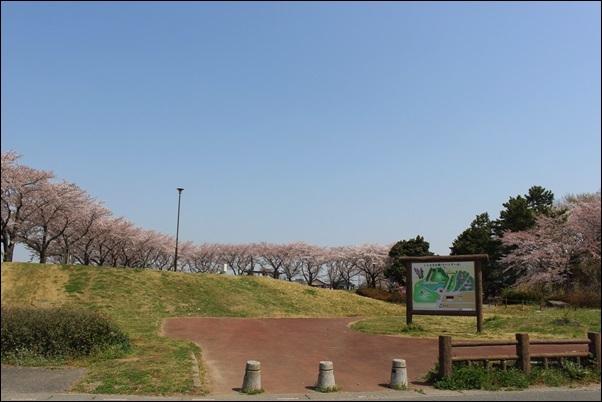 019しらさぎ公園