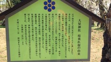 青森歩き2 (4)_500