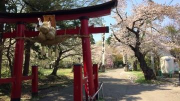 青森歩き2 (5)_500