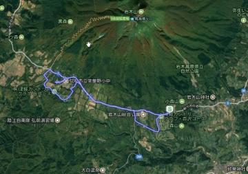 GPS桜並木 (1)