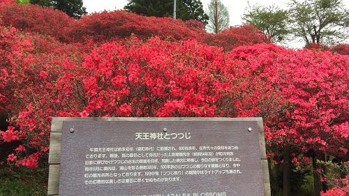 十和田歩き5-4 (11)_500