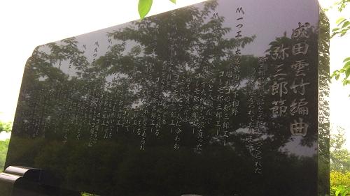 鶴田廻堰 (4)_500
