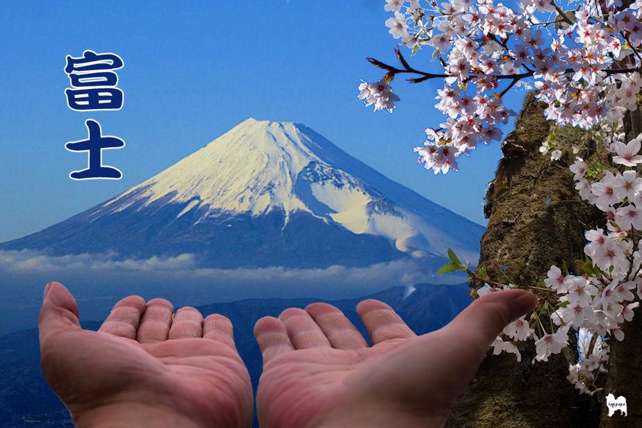 富士 合成