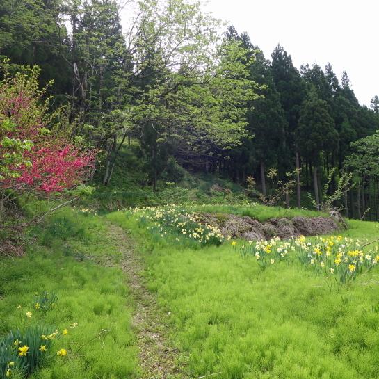 kanakurayama0012.jpg