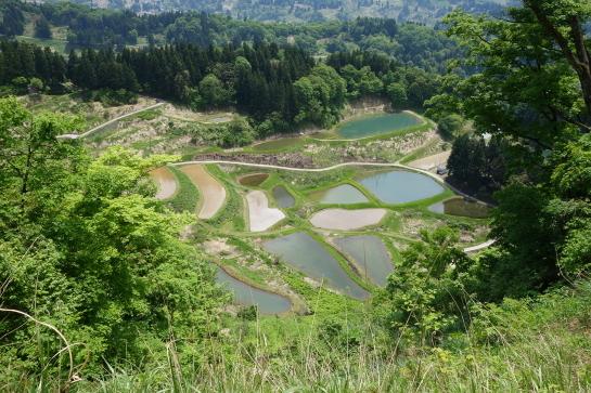 kanakurayama0140.jpg