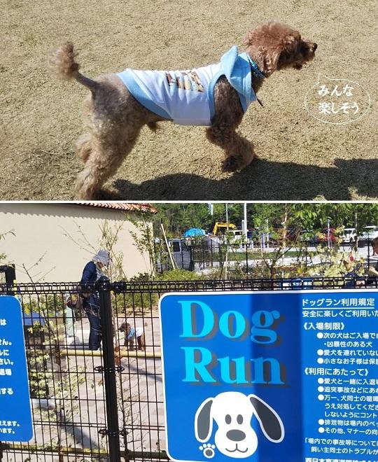 DogRun@宝塚北SA