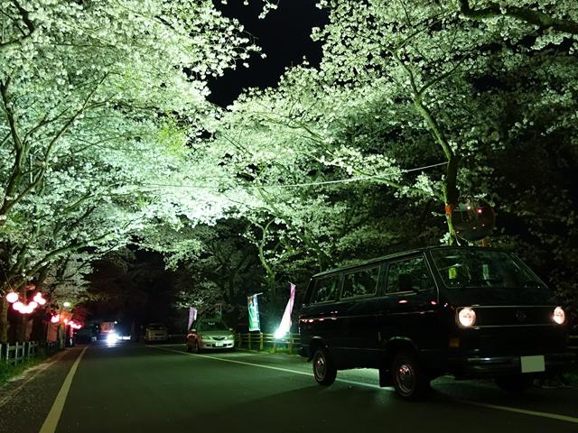 6回目のキャンプ_グリーンビレッジ川根_2日目