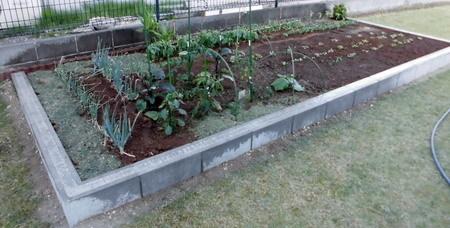 20180520菜園