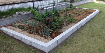 0528菜園