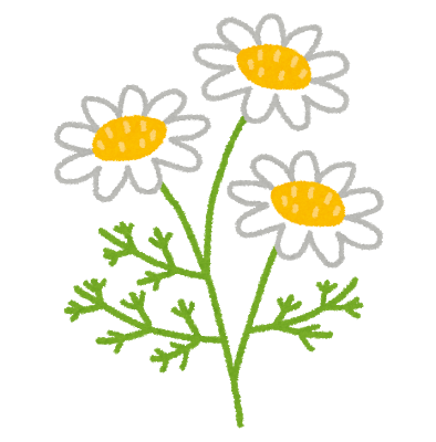 flower_chamomile_20180421152620d2e.png