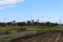 周囲の田が守っている新都心