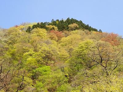 2018412武甲山 (11)