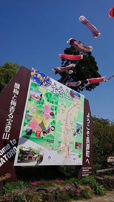2018421長瀞アルプス (7)
