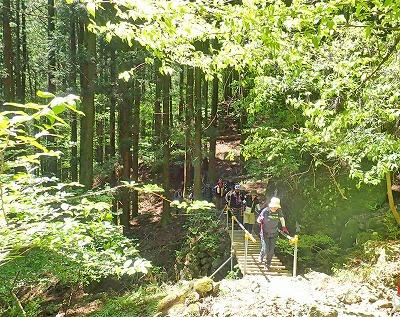 2018428武甲山 (2)