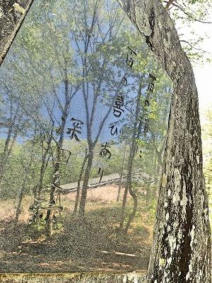201854茅ケ岳 (11)